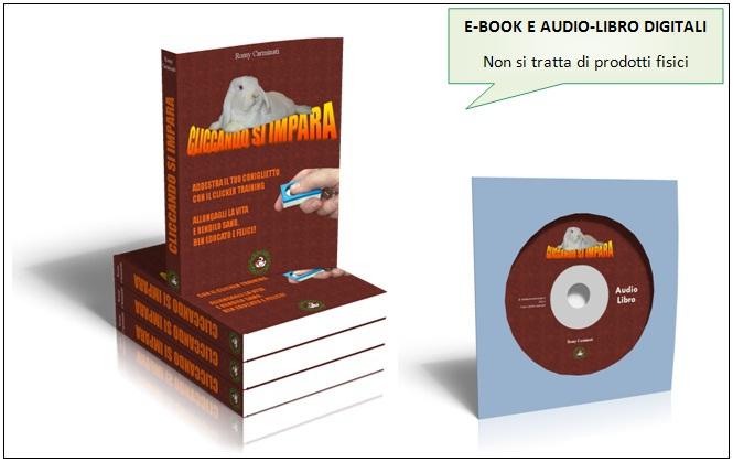 e-book e audio-libro