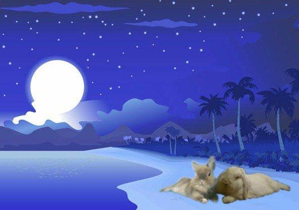 conigli in spiaggia