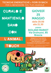 animal-touch-loca-web