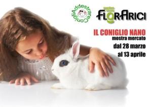 Florarici e Addestrare Conigli alla mostra mercato del coniglio nano