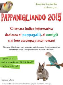 locandina pappanigliando 2015
