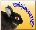 www.coniglionano.net - dott.ssa Valentina Nuti