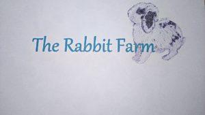 The Rabbit Farm - Allevamento estensivo, etico e consapevole