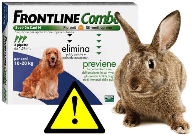 Non somministrare Frontline al Coniglio