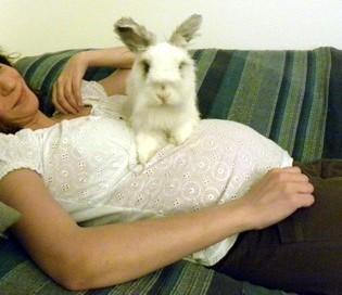 Bambini e conigli come far convivere bambini e conigli in - Lettiera coniglio nano ...