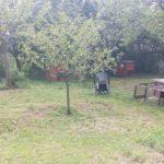La pensione estiva di Addestrare Conigli