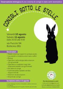 Locandina osservazione etologica conigli
