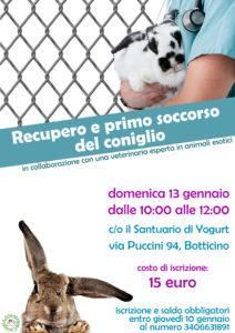 Locandina Corso di Recupero e primo soccorso del coniglio